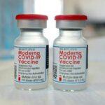 米FDA諮問委員、「直感で賛成に投票した」とモデルナ社製コロナワクチンの追加接種を推奨した理由を語る